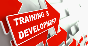 training-and-development-education-concept-m